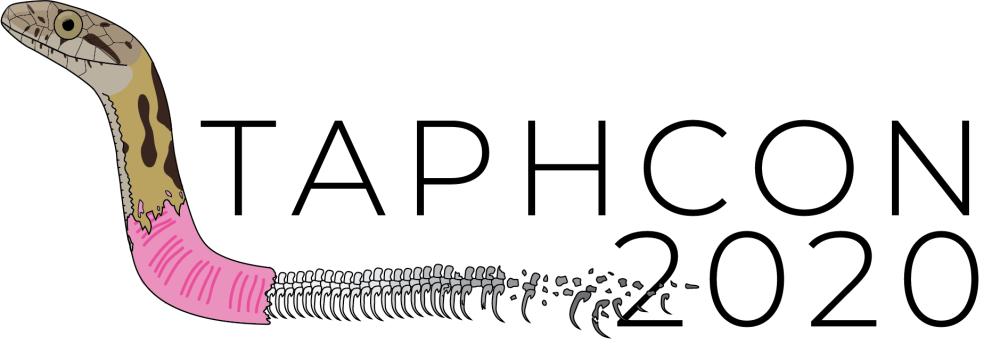 taphcon-2020-mk2